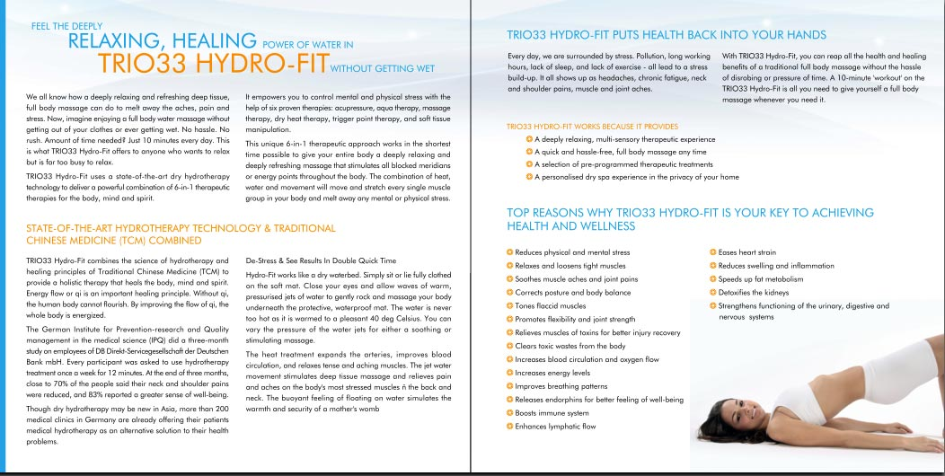 professional brochure writing by experienced singapore