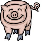 Chinese Astrological Pig